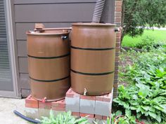 Those who practice rainwater harvesting are well aware of how critical a high-quality rain barrel is. Many rain harvesting enthusiasts have made the error of purchasing a poorly-made rain barrel only to find water. Rain Barrel Kit, Rain Barrel System, Rain Barrels, Organic Gardening, Gardening Tips, Food Grade Barrels, Green Living Tips, Worm Farm, Worm Composting