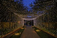 Wedding Receptions The Holiday Walk At Brookgreen Gardens In South Carolina Is Positively Magical - Wedding Entrance, Wedding Mandap, Entrance Decor, Bride Entry, Tent Wedding, Wedding Receptions, Wedding Dresses, Bridesmaid Dresses, Wedding Stage Decorations
