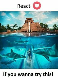 Cool Pools and Water Slides Amazing Places On Earth, Beautiful Places To Travel, Wonderful Places, Cool Places To Visit, Interesting Facts About World, Paradise Island, Travel Goals, Tenerife, That Way