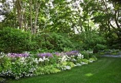 Perfect Perennial Border Repetition of color and texture move the eye along this bountiful border. Phlox, Cleome, and sweet alyssum add brilliant spots of color. Landscape Design, Garden Design, Hampton Garden, Iris, Garden Pictures, Garden Borders, Woodland Garden, Backyard Landscaping, Landscaping Ideas