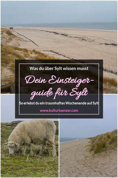 Dein Einsteigerguide für Sylt. So erlebst du ein traumhaftes Wochenende auf Sylt. #travelguide #rauszeit #auszeit #sychtig #insel #dieinsel #tipp #tipps