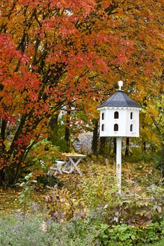 autumn leaves and birdhouse ~~ from an angel at my table