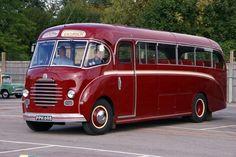 Volkswagen Bus, Volkswagen Beetles, Vw Camper, Bedford Buses, Malta Bus, Bus Drawing, Luxury Motorhomes, Land Rover Defender 110, Bus Coach