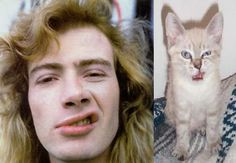 "Dave Mustaine & a ""lookalike"" kitty :) ~ David Scott ""Dave"" Mustaine (born Sept 13, 1961 in La Mesa, CA) is an American musician, best known as the founding guitarist/vocalist of the American heavy metal band 'Megadeth' & as the original lead guitarist for the American heavy metal band 'Metallica.'"