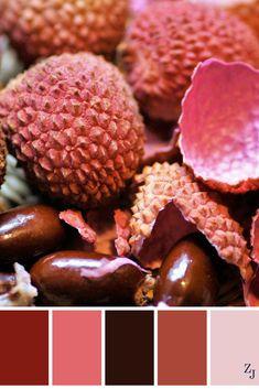 ZJ Colour Palette 179 #colourpalette #colourinspiration