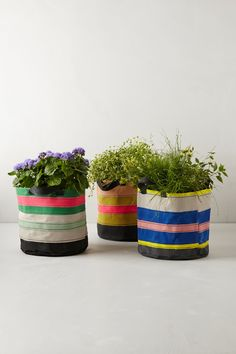 Canvas Tote Pot - Anthropologie.com #Anthropologie #PinToWin