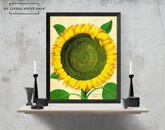 Vintage Sunflower Botanical Print, Gift for Her, Flower Print, Flower Wall Art,
