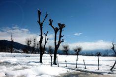 jammu and kashmir - My first impression of Kashmir