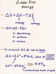 MCAT Study Blog: BIO Lecture 1: Thermodynamics