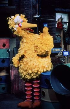 """Does Big Bird have a weight problem? 23 Questions """"Sesame Street"""" Has Left Unanswered Mickey Mouse Parties, Mickey Mouse Birthday, Toy Story Birthday, Toy Story Party, Big Bird Sesame Street, Train Party, Pirate Party, Sesame Street Muppets, The Muppet Show"""