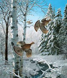 Winter Wonder- Ruffed Grouse by David A. Maass
