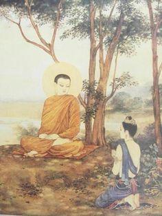 Buddha and flower!OM MANI BAMEI HON....! VISHAL SAWAI