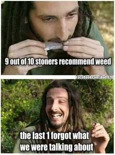 9 out of 10 stoners recommend weed, the last 1 forgot what we were talking about Weed Jokes, Weed Humor, Stoner Humor, Stoner Quotes, Up In Smoke, Medical Marijuana, 420 Memes, Marijuana Recipes, Ganja
