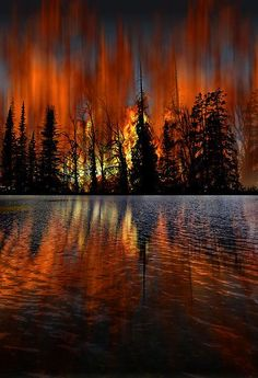~~blazing forest and fire reflection by peter holme III~~