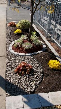 Small Front Yard Landscaping Ideas on A Budget (54) #LandscapingIdeas