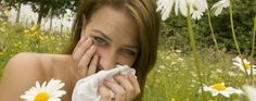 Asthma UK | Hay fever & rhinitis
