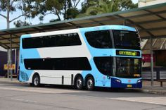 Hillsbus-6089The buses are built by the Australian company Bustech is a 12.5 metres in length with a carrying capacity of 110 passengers. livery for Transport for New South Wales