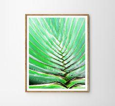 Plant print Tropical decor Tropical wall art Wall by WallArt2Decor