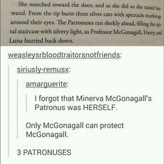Only McGonagall can protect McGonagall