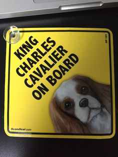 On Board Dog Car Sign Cavalier King Charles Spaniel  Pup Suction Cap provided