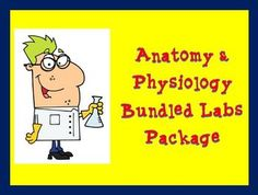 This bundled package includes all the lab activities I use in my Anatomy & Physiology class. Many of these labs can also be used in a Biology course. Included in this package are 19 different labs, with guidelines, materials lists, and answer keys included. $