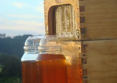 FlowHive -an innovative non invasive way to raise bees and collect fresh unfiltered, yet pure, natural honey. NOW AVAILABLE for backyard to multiple hive keepers!