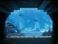 the dig atlantis | The Dig - View to Ruins Lagoon » Atlantis Bahamas Gallery