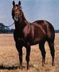 Magnolia Bar 1959 Sorrel Stallion by Three Bars TB x Lassies Dream