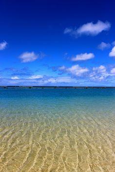 Snapshots from Hawai'i: ala moana beach park