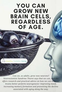 You Can Grow New Brain Cells, Regardless of Age. Here's How