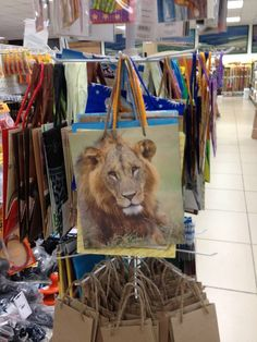 Wildlife gift bags - Lion