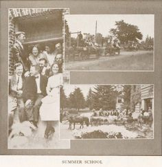 1912 summer school at the UO.  From the 1914 Oregana (UO yearbook).  www.CampusAttic.com