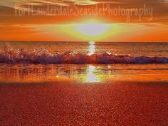 ~ Oceans of Fun ~ Courtesy of Fort Lauderdale Seaside Photography