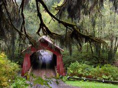 North Fork Yachats River Covered Bridge, Oregon Coast