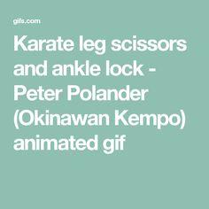 Karate leg scissors and ankle lock - Peter Polander (Okinawan Kempo) animated gif
