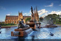 Archibald Fountain, Sydney - The Archibald Fountain is located in Hyde Park, in central Sydney.