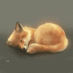 Discover & share this Sleeping Fox GIF with everyone you know. GIPHY is how you search, share, discover, and create GIFs. Cute Baby Animals, Animals And Pets, Funny Animals, Animal Memes, Sleeping Fox, Fuchs Baby, Fox Gif, Fuchs Illustration, Fox Drawing