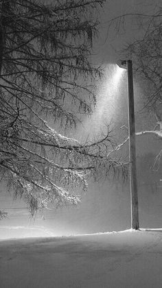 Lighting the way home...