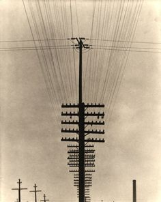 howtoseewithoutacamera:  by Tina Modotti Telegraph Wires, Mexico 1925-1928.