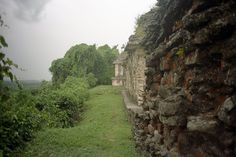 Visit the Mayan site of Palenque in the jungle of Chiapas state