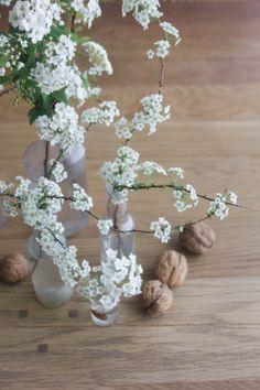 Spirée Cette délicate branche fleurie apparait au printemps. Elle apporte beaucoup de légèreté aux bouquets, mais est également ravissante utilisée seule. Pour créer un décor à moindre frais, utilisez quelques flacons anciens auxquels vous ajouterez des branches de spirée de différentes hauteurs.