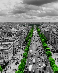 Follow the green path by Toño Ortiz,,,color splash
