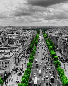 Follow the green path by Toño Ortiz,,,color splash
