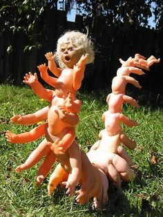 Doll centipede.....even tho i havent seen that movie yet