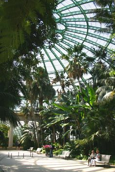 Interior of the 'Jardin d'hiver' at the Royal Greenhouses, Laeken, Brussels, Belgium Greenhouse Gardening, Garden Planters, Victorian Greenhouses, Greenhouse Effect, Conservatory, Botany, Indoor Garden, Botanical Gardens, Places To Go