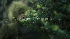 De Groene Gorilla ontdekt de tuin : ACTIE VAN NATUURPUNT