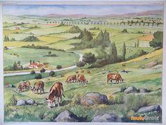 Affiche scolaire Montagne usée sur www.muluBrok.fr