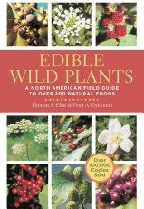 """The second part of the """"Wild Plants You Can Eat"""" series covers 10 more plants you should learn to identify and forage. They're delicious and healthy!"""