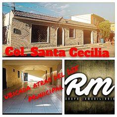 COL.SANTA CECILIA