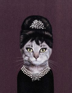 This sleek, bedazzled cat is ready for breakfast at Tiffany's.
